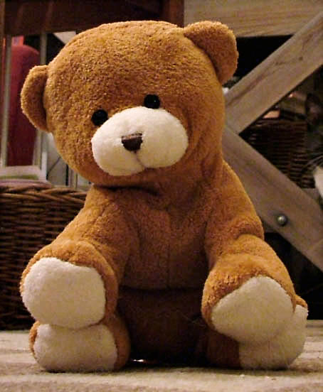 Nalle_-_a_small_brown_teddy_bear